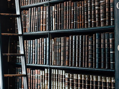 books on shelves with ladder